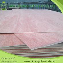 Poplar / Hardwood Core Bbcc grau 3.2mm Bintangor madeira compensada com preço barato