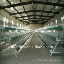 poultry battery cages(manufactory)