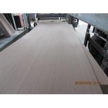 Contrachapado de melamina / madera contrachapada cruda con precio barato