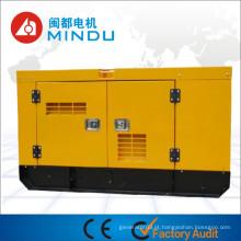 Preço Baixo 48kw Gerador Diesel Weichai com ATS