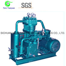 Oil Free Lubrication Small Light Weight LPG Gas Compressor