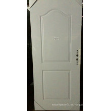 2 paneles de puerta clásica puerta de paneles americanos