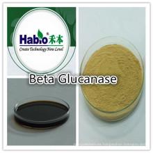 Enzima de glucanasa, aditivo para alimentación animal