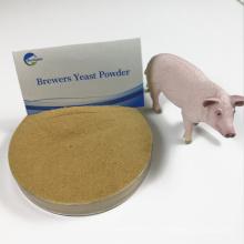 alimentação de porcos inchaço levedura levedura de cerveja seca com preço mais barato