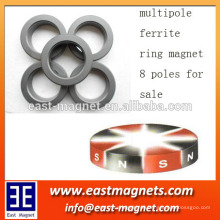8 Pole magnetische Eigenschaften des anisotropen Ferritmagneten radial multipolar magnetisiert