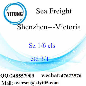 Pelabuhan Shenzhen LCL Consolidation To Victoria