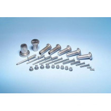 China Popular Fastener Nonstandard Metal Solid Rivet