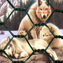 Zool Tierschutz Hexagonal Wire Mesh