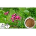 100%Natural Lespedeza Capitata Extract / Quercetin