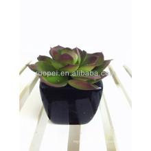 2016 дешевые мини искусственные горшках сочные растения для домашнего декора