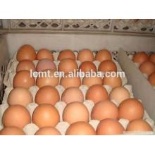 Bandeja de papel de vendas diretas de fábrica 30 bandeja de ovos