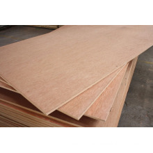 1220*2440mm natural veneer faced plywood