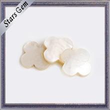 Escudo bonito branco natural da forma da flor para a jóia
