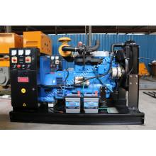 Tragbare Heimgebrauch Diesel Motor Stromerzeuger 80kw