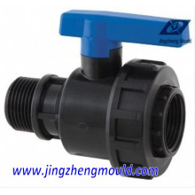 PP Ball Valve Pipe Fitting Mold/Molding