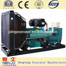Industry Paou 300Kva Diesel Generator Set en venta