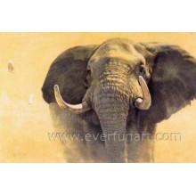 Handgemalte indische Elefantenmalerei