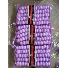 Ail violet frais avec 5p / sac de maille dans le sac de maille de 10kg