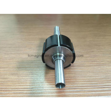 Rotor Magnets with Black Epoxy Coating