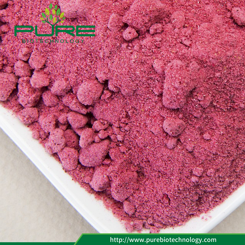 Anti-oxidant Fruit Dried Cranberry Extract Powder4