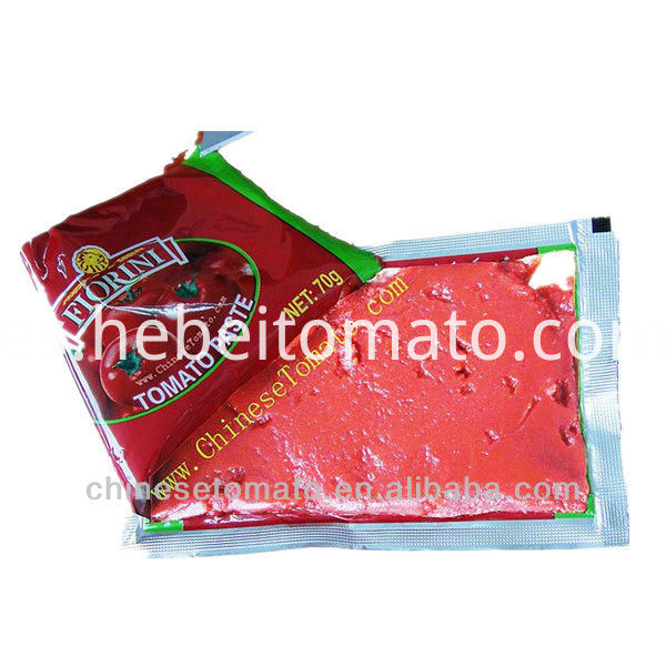 70g standup and flat Pouch tomato paste with low price