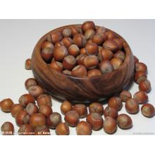 Chestnut fresco chinês cru Chestnut granulado chinês Preço