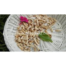 Matériaux de culture de champignons les plus parfaits pour les champignons