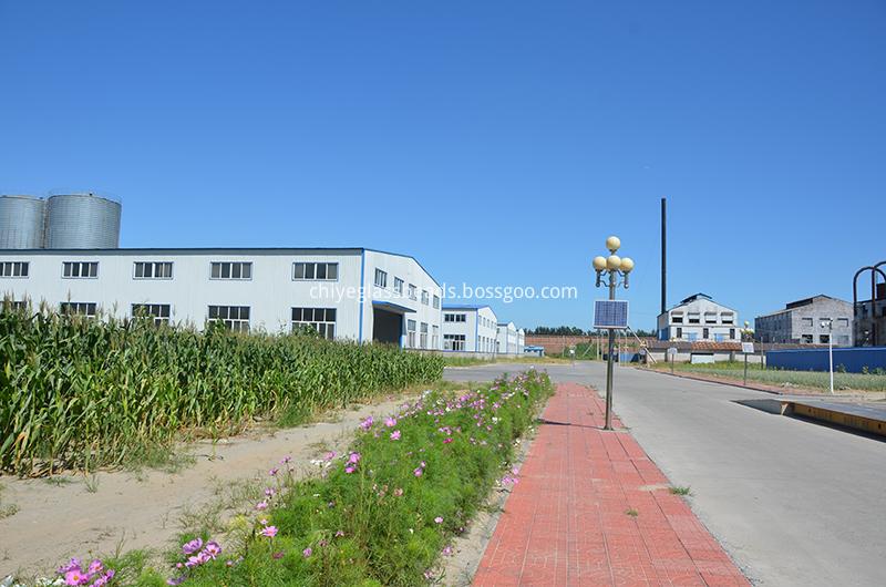 Factory Corner1