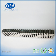 4.3 * 9 mm Magnetic Toy Block Magnet Parts Radial Magnetization