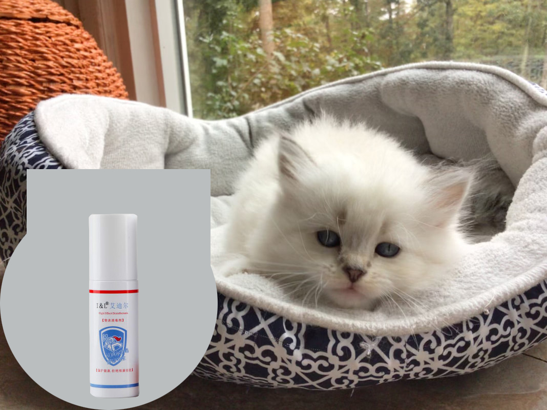 cattery sanitizer2