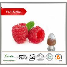Extracto de frambuesa 100% natural, cetona de frambuesa 99% para bajar de peso