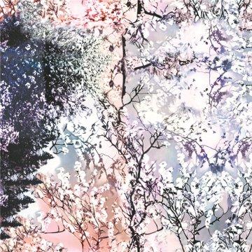 Kleid Digitaldruck Chiffon Seide Stoff (XF-0101)