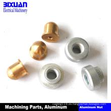Piezas de torneado de la tuerca de cobre amarillo de la nuez de aluminio de la pieza que trabaja a máquina