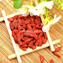 Mechanical Dried Goji Berry Conventional Goji Berry