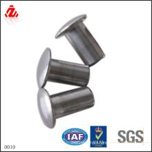 Made in China Custom Aluminum Solid Rivets