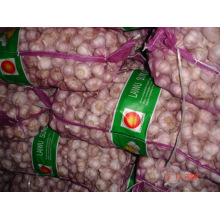 2015 New Fresh Normal White Garlic