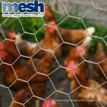 China galvanized hexagonal chicken wire mesh