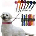 Dog Leash Harness Treinamento de Treinamento Cat Pet Leash