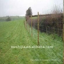 Réseaux de vache de qualité supérieure / clôture de bétail net / clôture de maille d'animal (fabrication)