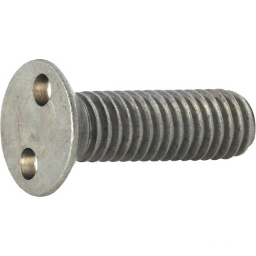 Countersunk Security Screw with Snake eye