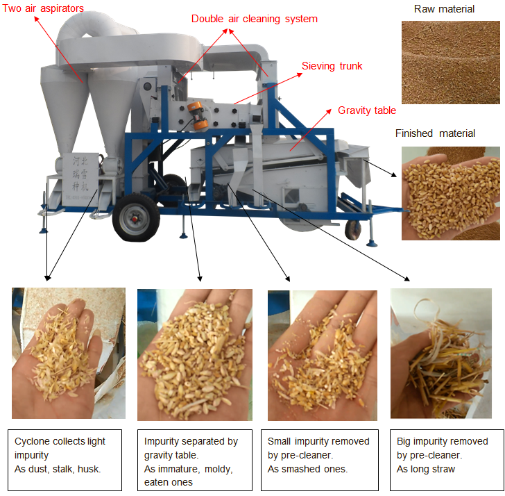 combined seed cleaning machine