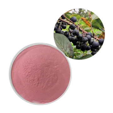Factory Supply Aronia Chockberry Fruchtpulver Aronia Pulver
