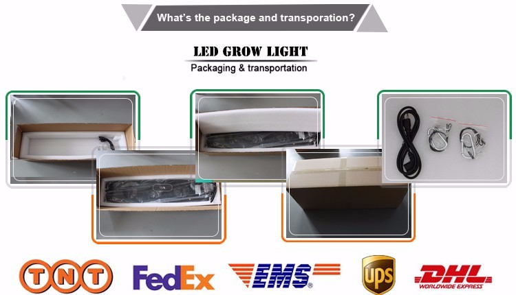 Greenhous LED Grow Lights