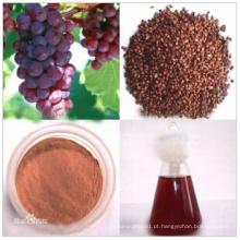 Matéria-prima óleo de semente de uva solventes orgânicos CAS: 85594-37-2