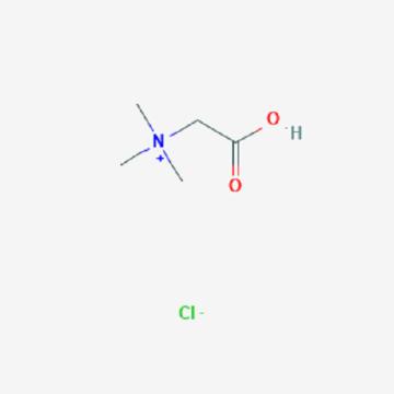 Cloridrato de betaína, produto CAS NO. 590-46-5