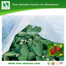Cheap Sunshine uv protective PP Non Woven/Nonwoven Fabric