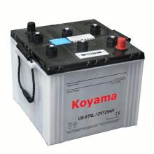 Trockene Ladung Traktor Batterie -DIN60013-12V100ah (60013)
