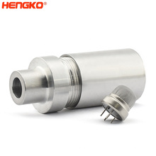 Explosion proof and flameproof sintered stainless steel toxic sensor probe housing