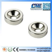 Haus Magnet Magnete Elektromagneten und Permanent Magnete