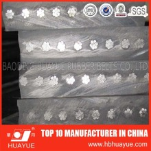 Industrie Heavy Duty Steel Cord Conveyor Belt
